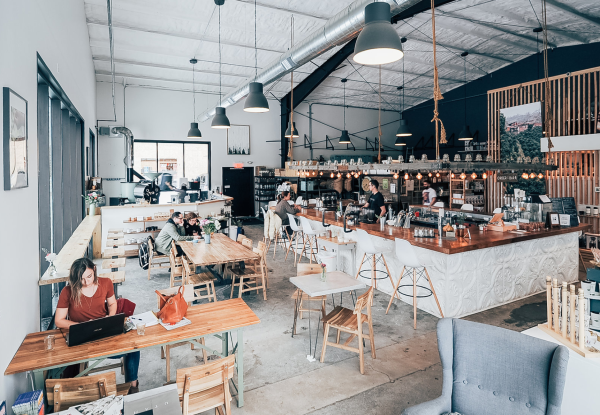 Treeline Coffee: Talking Roasting and Re-branding with Natalie Van Dusen