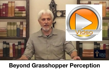Beyond Grasshopper Perception!