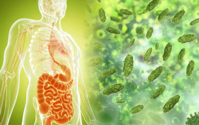 Eliminate Microorganisms