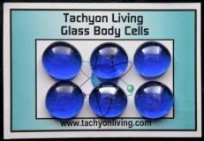 Tachyon Healing, Tachyon Living, Tachyon Products