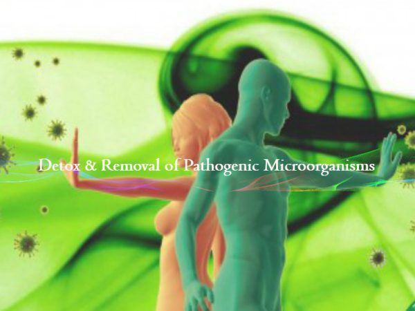 Metal Detoxification & Removal of Pathogenic Microorganisms