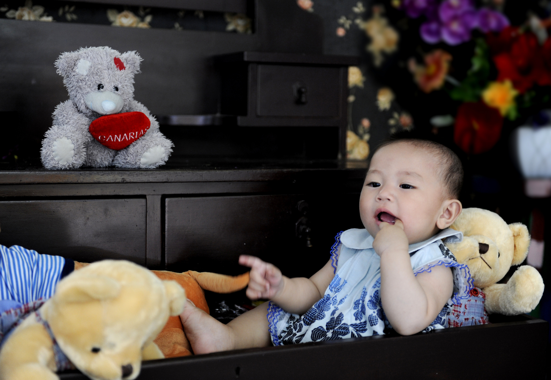 baby with bears in drawer sucking finger baby professional photo dallas