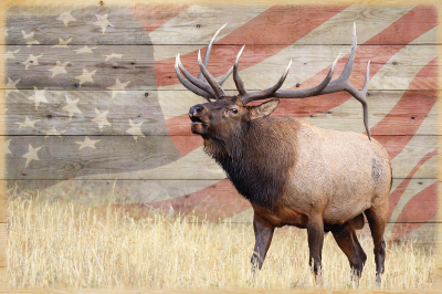An American Legend Wood Slat Art