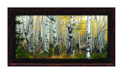 Kings of Autumn Framed Giclee Canvas Print