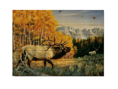 SEPTEMBER RIVALRY PALLET WALL ART