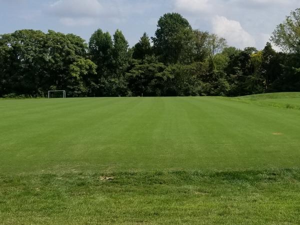 Bluemuda soccer field