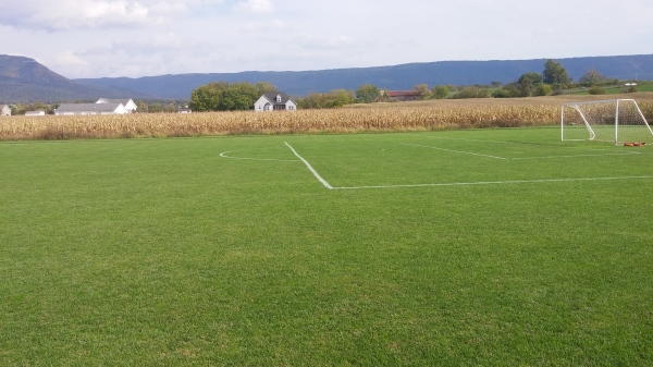 Cool season soccer field