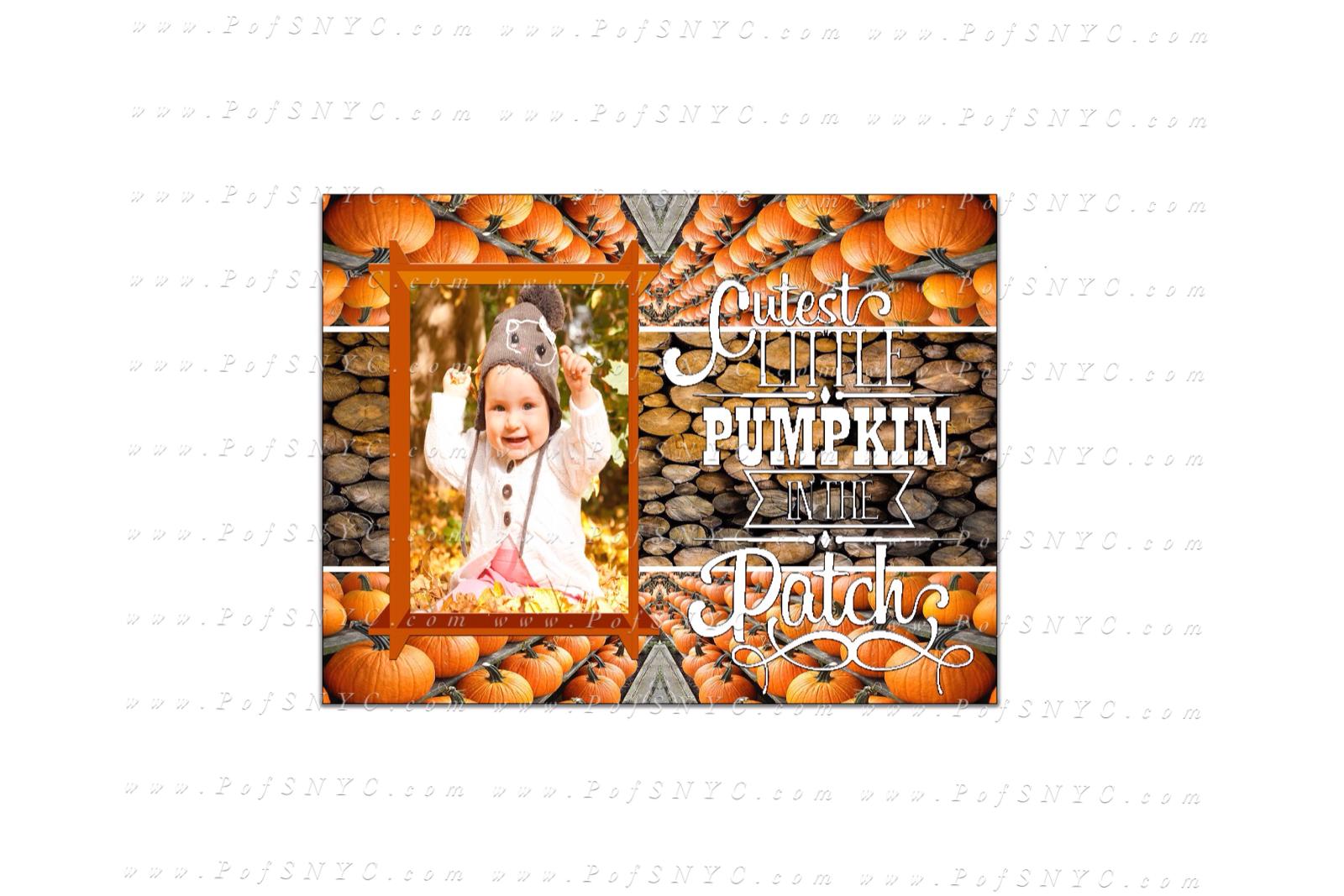 Pumpkin Patched