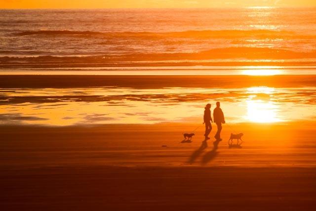 Arrival Guide: Ocean Shores