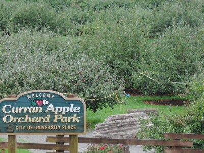 Duran Apple Orchard