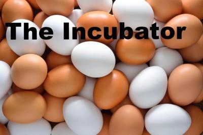The Incubator
