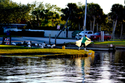 Fishing on The Eau Gallie River