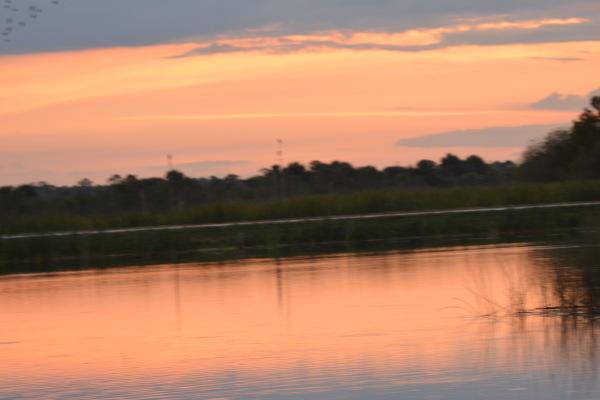 Ritch Grissom Memorial Wetlands, Viera Florida