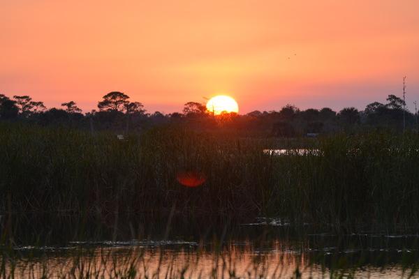 Sunset at Ritch Grissom Memorial Wetlands3