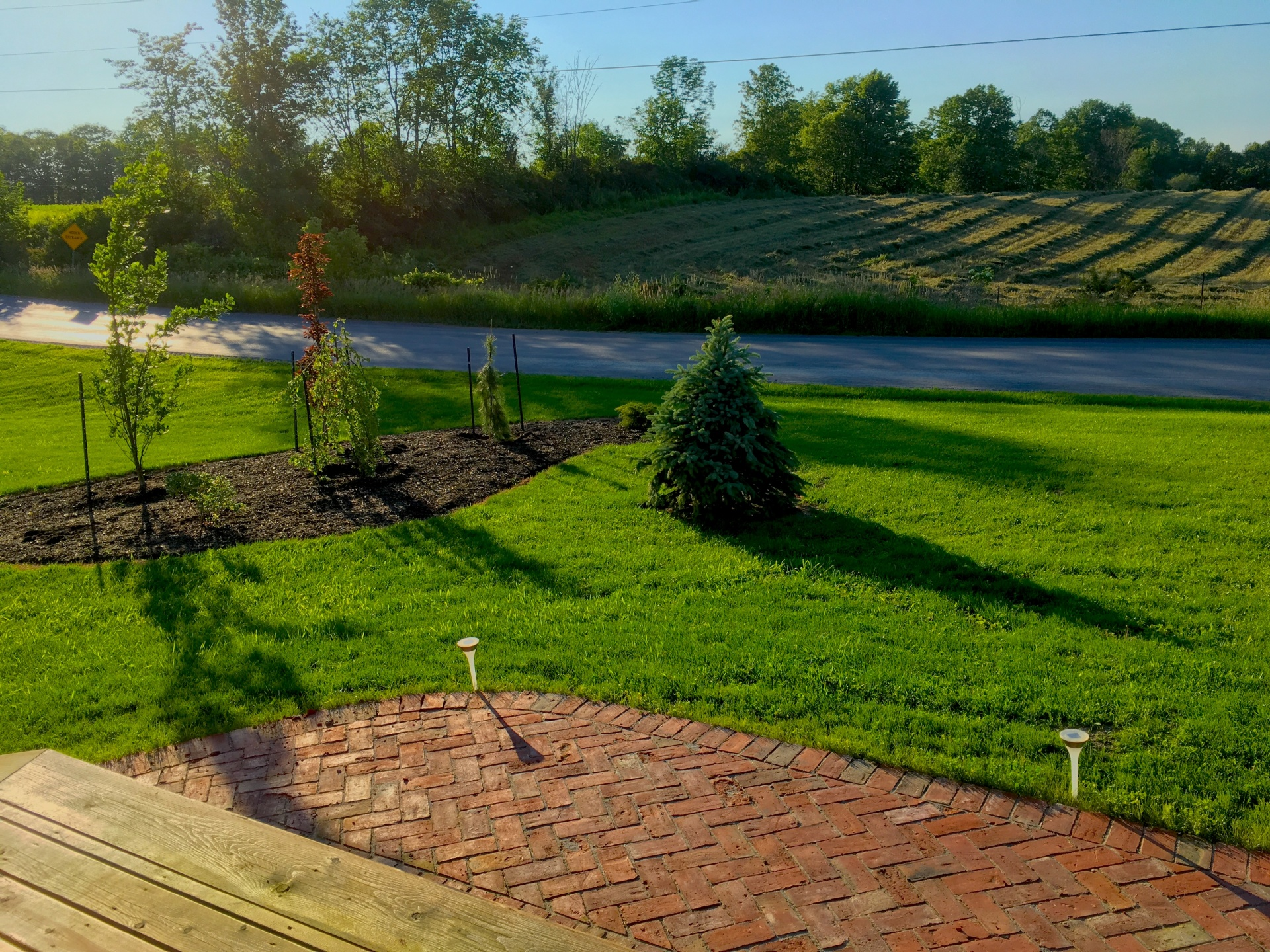 Red brick herringbone pattern entryway with new tree plantings and lawn