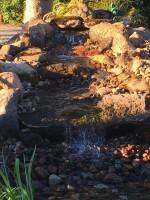 Water garden, water feature, pondless, backyard waterfall design and installation