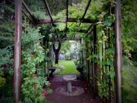 arbour, pergola, bird bath, vines, perennials, backyard garden