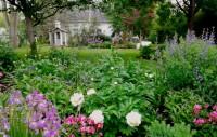 Perennial Gardens in Ontario