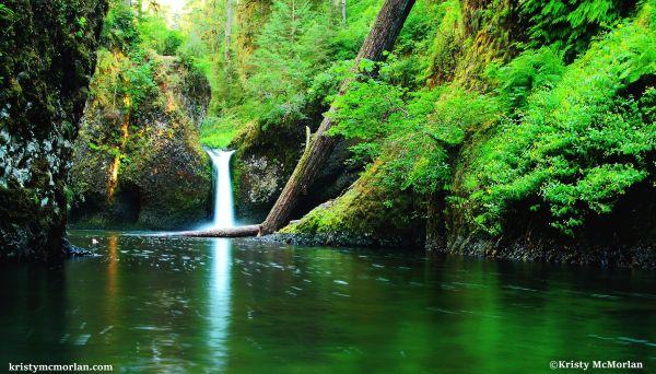 Lower Punchbowl Falls, Eagle Creek, Columbia River Gorge, Oregon