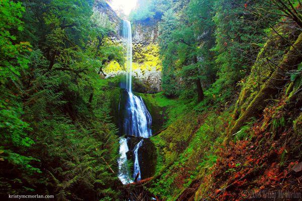 Pup Creek Falls, Clackamas River Trail, Oregon