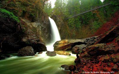 Drift Creek Falls,Oregon
