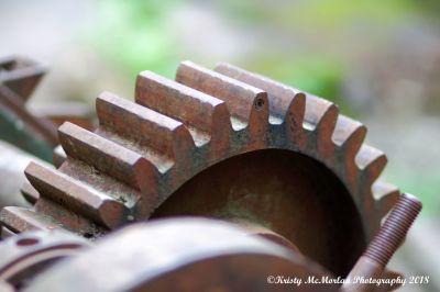 Old Machinery Gear Abandoned In Opal Creek Wilderness