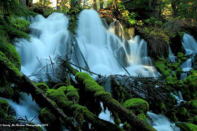 Clearwaters Falls, Oregon