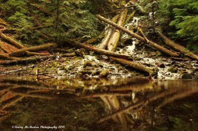 Upper Proxy Falls, Oregon