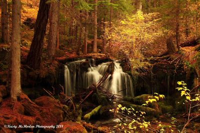 Pearsoney Falls, Oregon