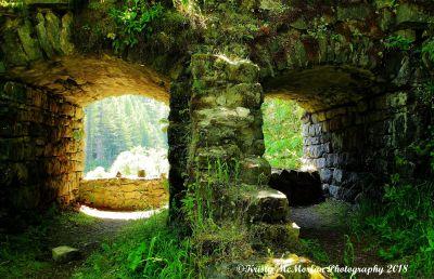 Oregon Old Dam Structure