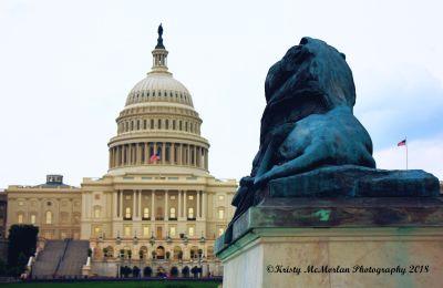 Washington D.C. Capital Building