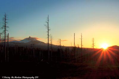 Mt. Washington Wilderness