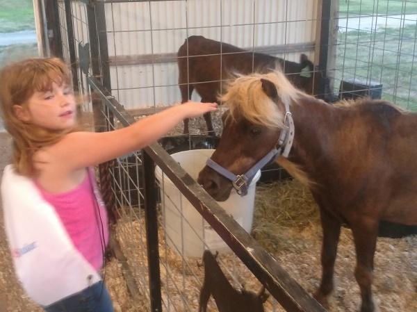 FFA Kiddie Barn