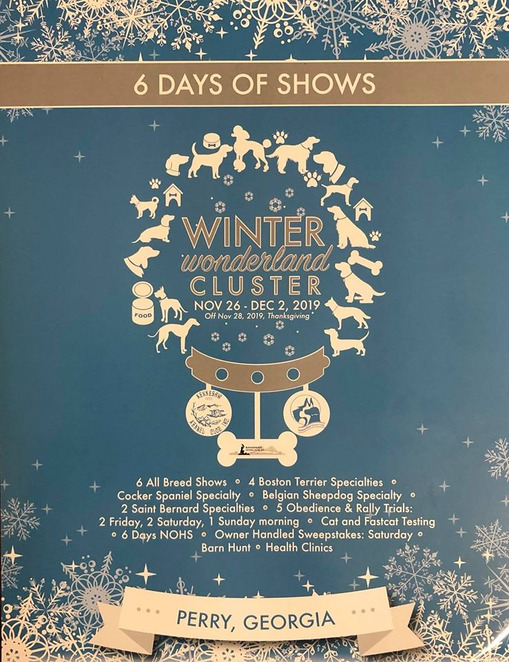Winter wonderland Cluster show, Nov 26-Dec 2