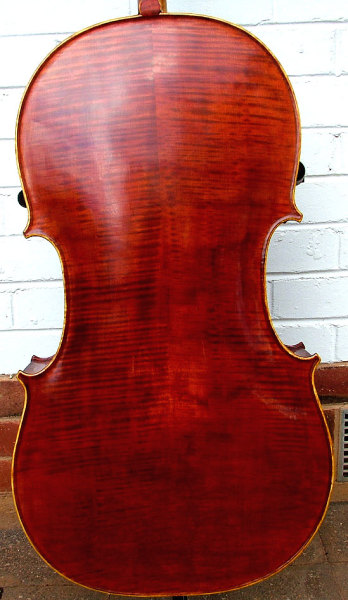 This cello's back