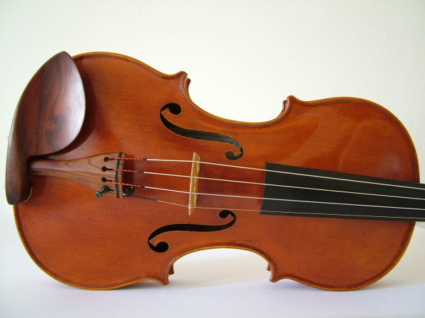 Violin made by JW Robinson, #222