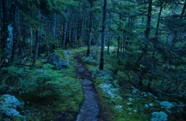11 National Scenic Trails
