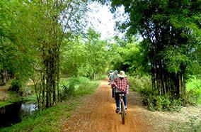Countryside Bike