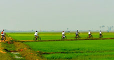 Bike Tonle Sap