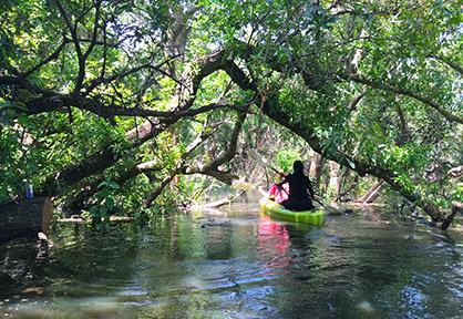 Mechrey Kayaking