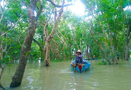 Kompong Phluk Mangrove
