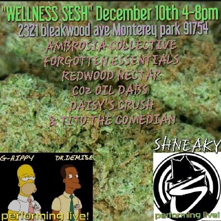 Wellness Sesh