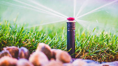 Make Your Garden Stand out More with Some Landscaping Lighting and Irrigation