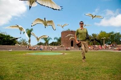Jungle park Tenerife - free shuttle bus - online tickets
