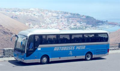 Tenerife excursions - coach tours to Teide, Masca, dragon tree, lava pools