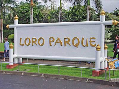 Transfer Loro Park