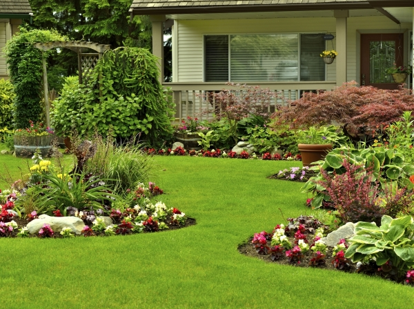 Things That Should Guide your Search for Landscaping Architecture