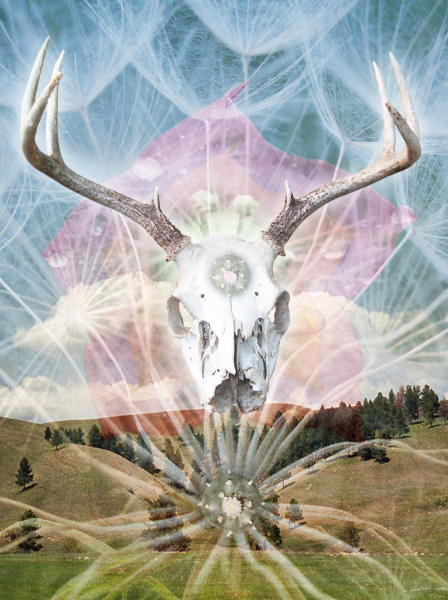 Erika Gagnon    I   Mother Earth - Father Sky    I    24 x 20     I    Digital Collage    I    $400