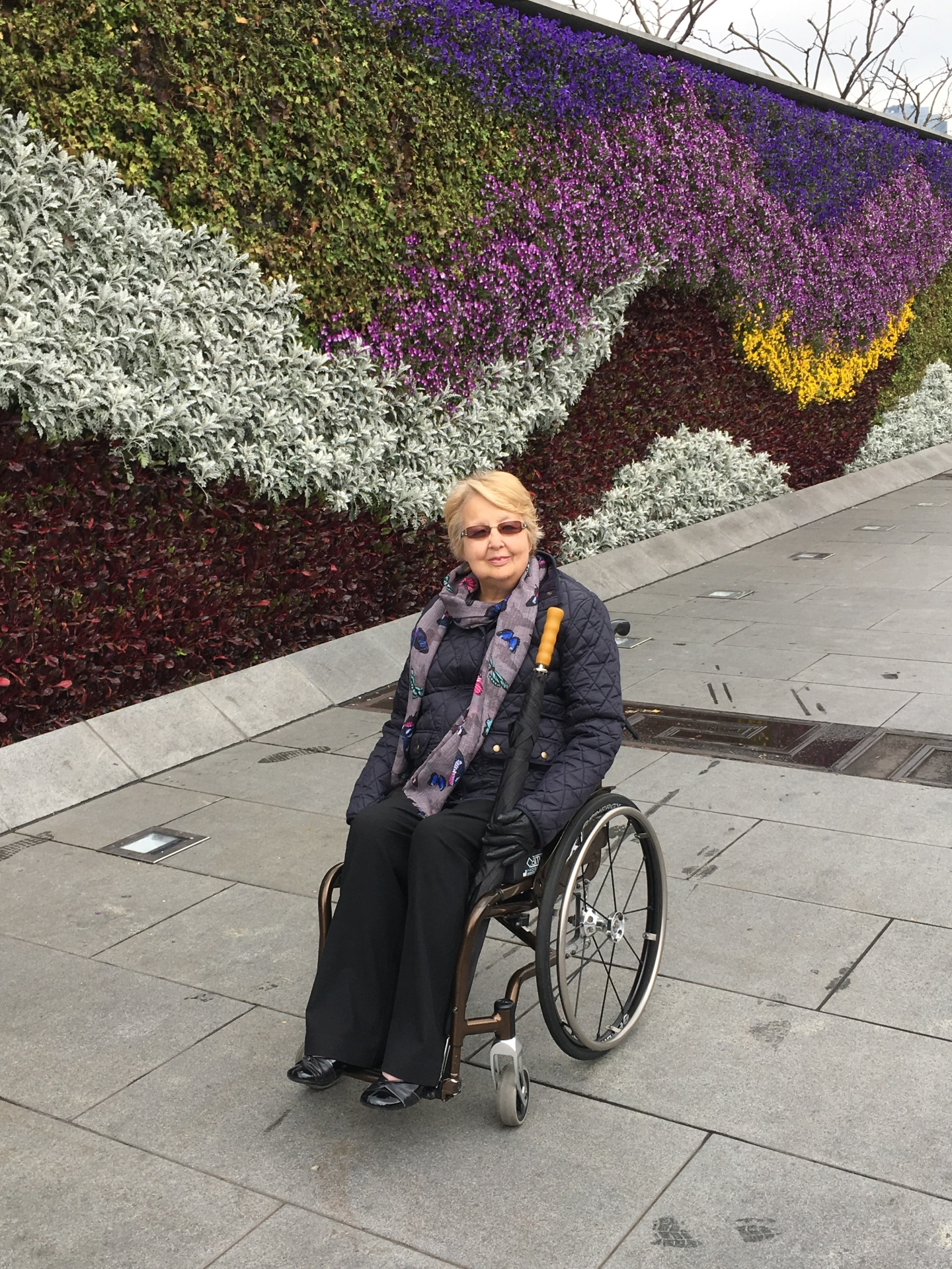 Life in a Wheelchair - The Facts