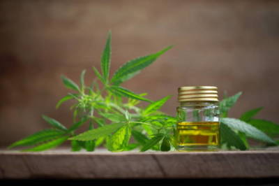 The Various Types of the Medical Marijuana That You Can Buy